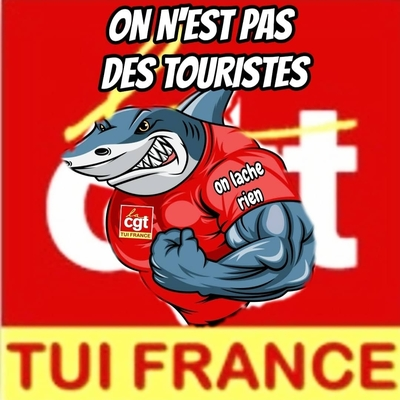 cgttuifrance@mamot.fr